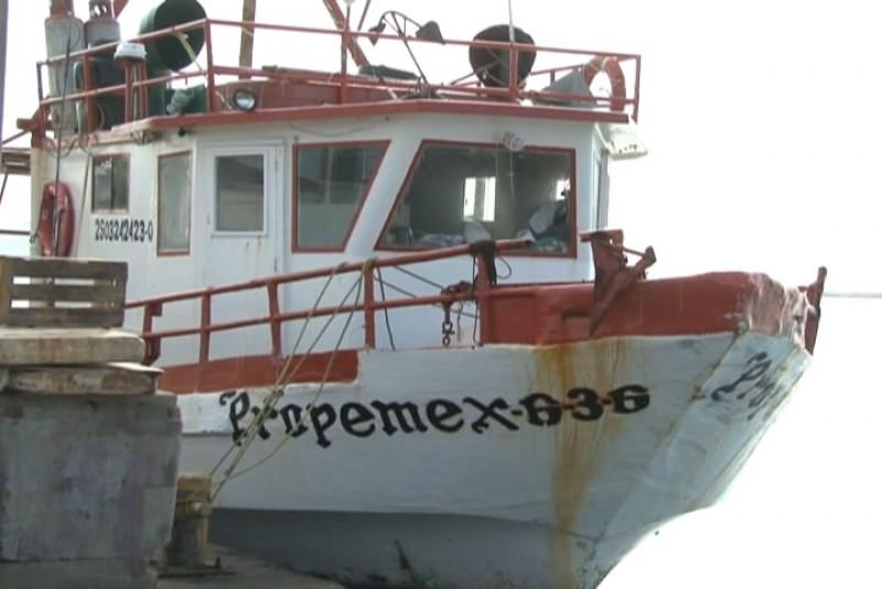 Buena producción registran barcos tiburoneros