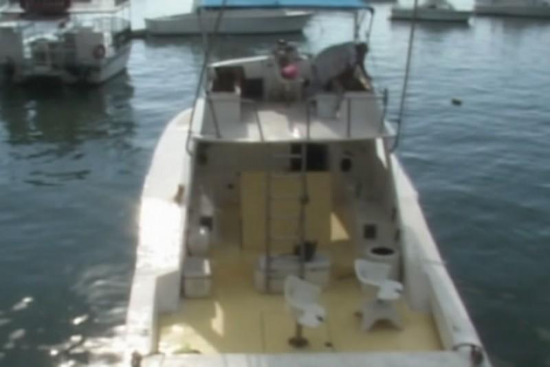 Turismo naviero reactiva la pesca deportiva
