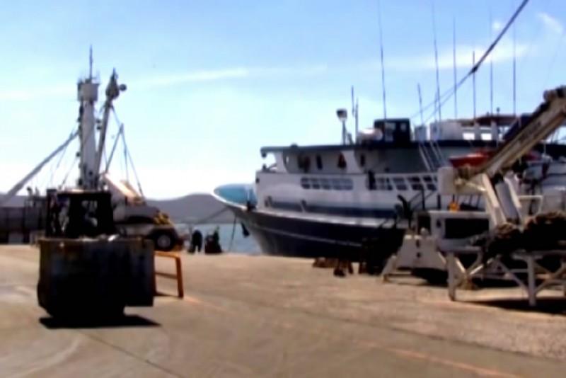 Buena producción de atún en el 2014:CONAPESCA