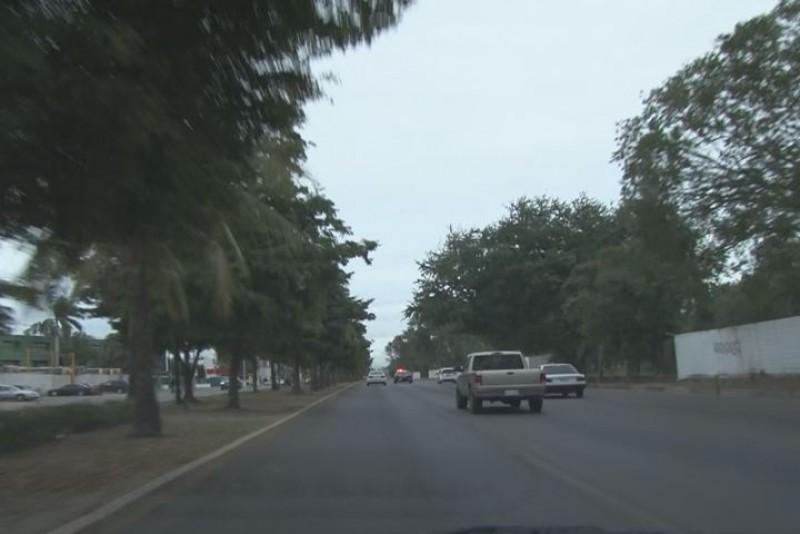 Establecidas en Sinaloa 561 mil 741 has. de cultivos