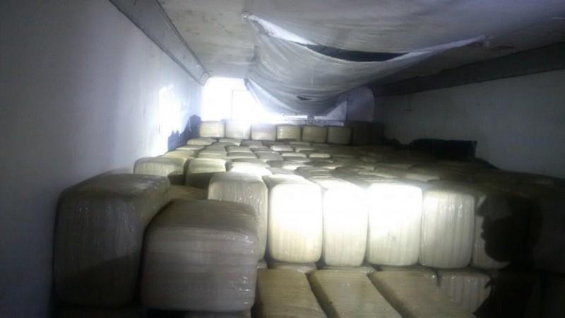 Aseguran 7 tonelada de mariguana