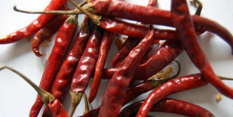 Chile de árbol, el ingrediente que da identidad a las familias mexicanas