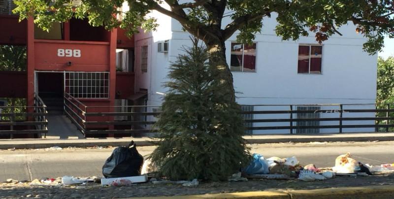 Basura, pinos navideños y hasta muebles viejos en Cañadas | La ...