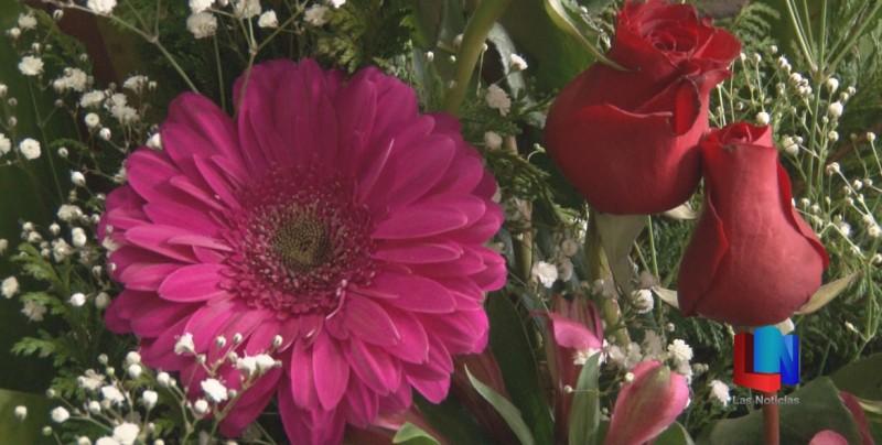 Los Colores de las Flores tienen Significado