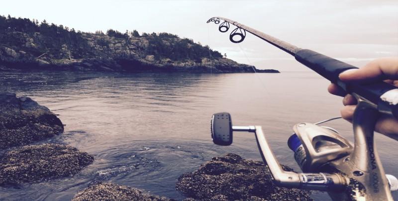Ambientalistas recogen firmas para detener pesca de arrastre en Costa Rica