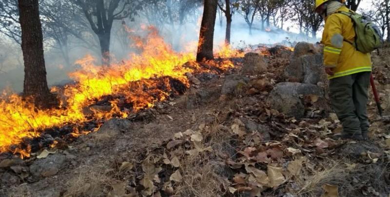 Suspenden clases en municipios de Jalisco por incendio forestal