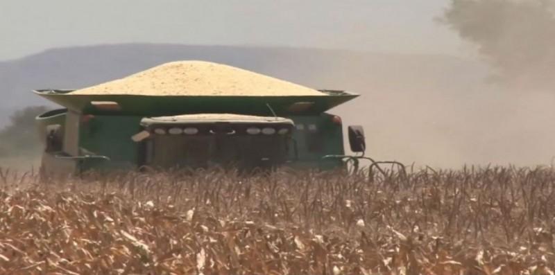 Hay disposición de SAGARPA en concluir pagos a productores de Sinaloa