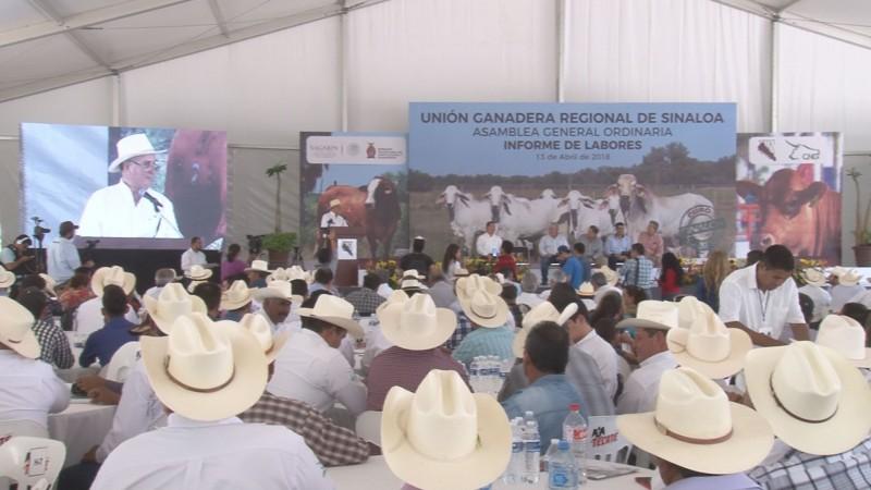 Presenta Daniel Osuna primer informe al frente de la UGRS