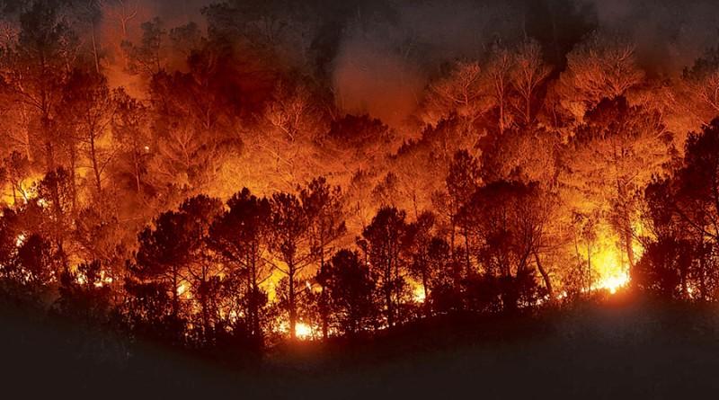 Urgen a conformar más brigadas contra incendios forestales