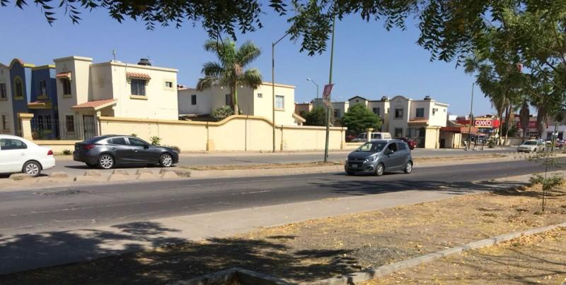 Muchas grietas por la Paseo del Sauce en Cedros