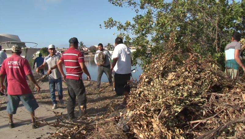 Pescadores limpian estero del infiernillo