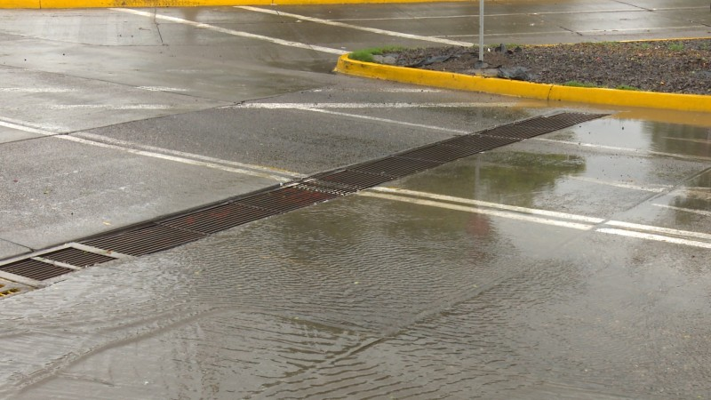 Limpian bocas de tormenta y rejillas para evitar inundaciones
