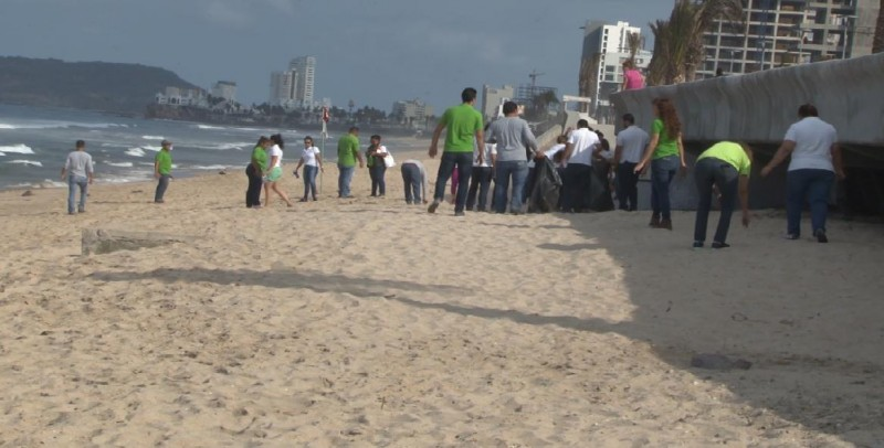 Limpian las playas en el marco del Día Mundial del Medio Ambiente