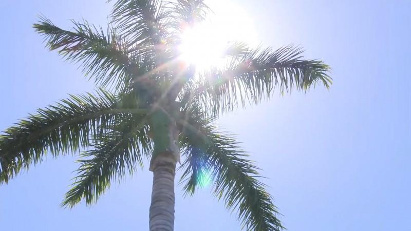 Atenderán alerta de calor: Alcalde