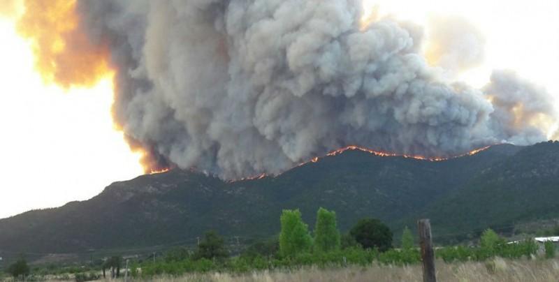 Incendio consume más de 600 hectáreas en Arteaga, Coahuila