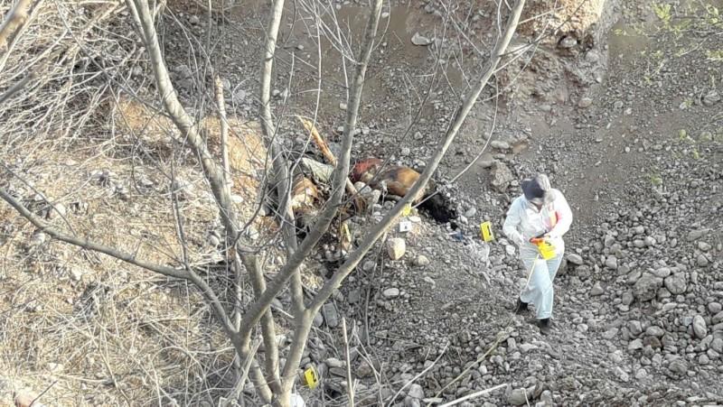 Encuentran dos personas asesinadas al sur de la ciudad