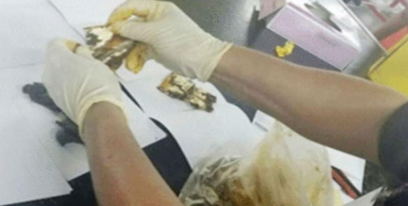 Decomisan en aeropuerto droga oculta en bolsas con mole