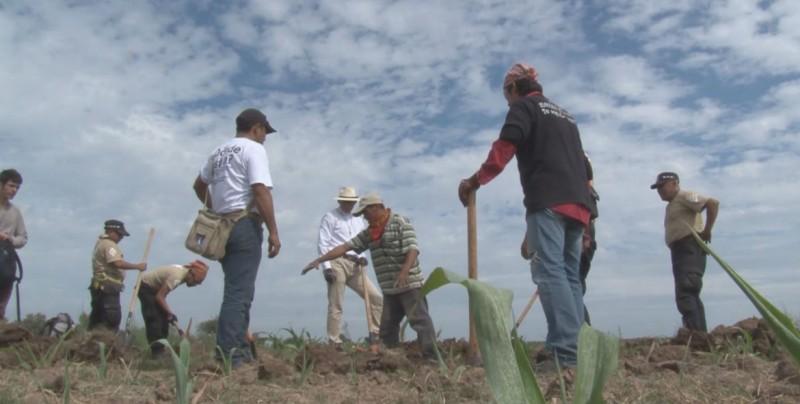 Sinaloa encabeza estados por desapariciones forzadas