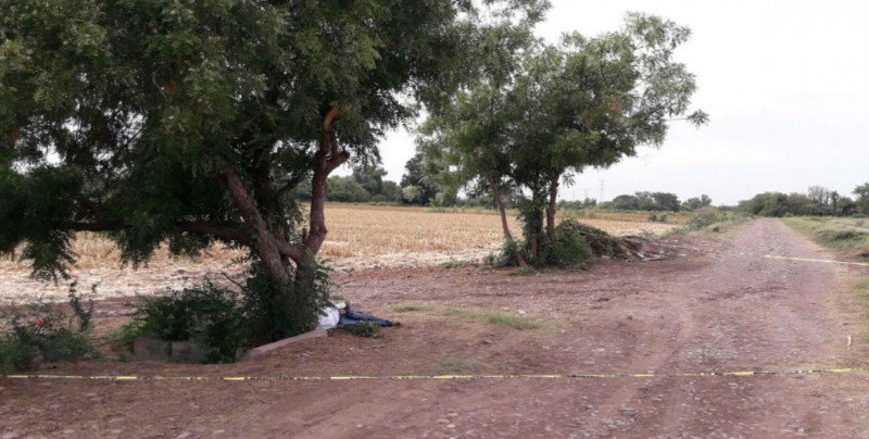 Encuentran cuerpo sin vida en Culiacancito