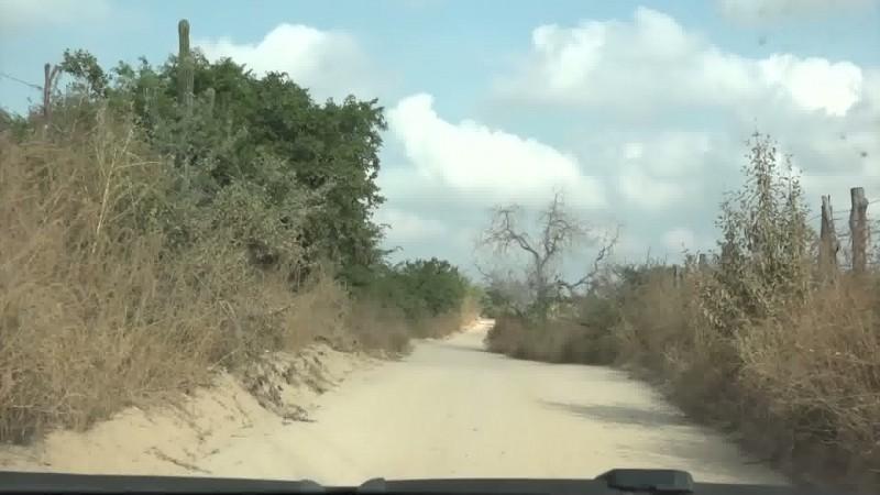 Grave la sequía en la región: Queseros del Sur de Sinaloa