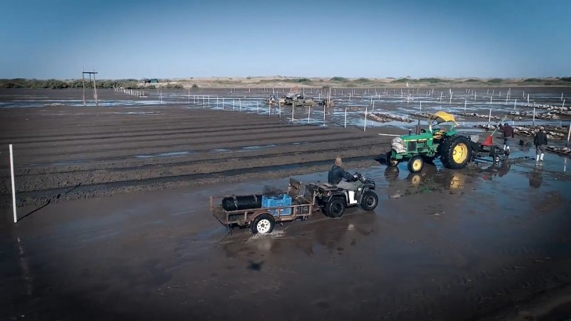 IP pide inversión de la secretaría de pesca en el caso del Colorado