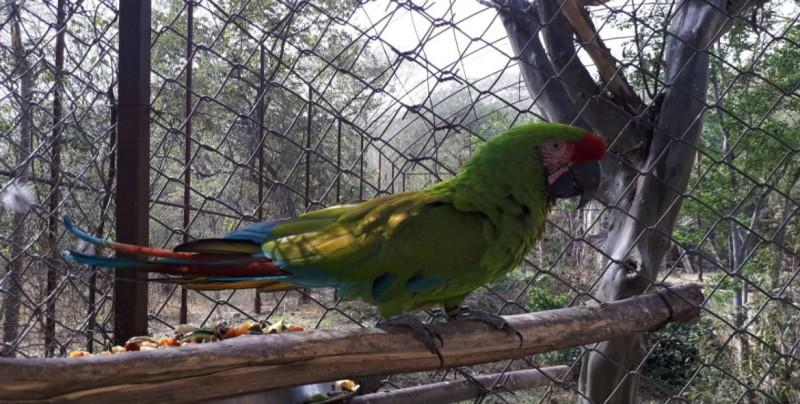 Invitan a visitar la Reserva Ecológica de la U.A.S.