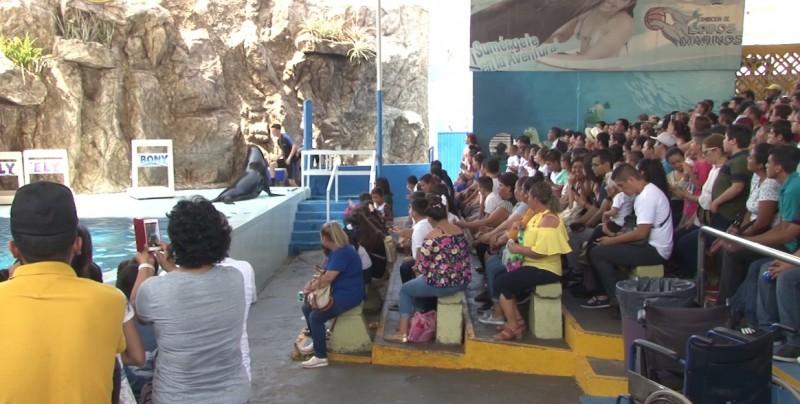 Disfrutan turistas de Acuario Mazatlán