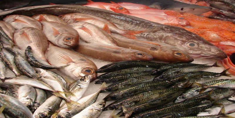 Consumo de pescado en Latinoamérica subirá un 33 % para el 2030, según FAO