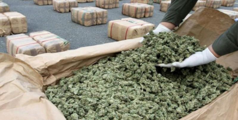 Decomisan 170 toneladas de marihuana en operativos en frontera con Brasil