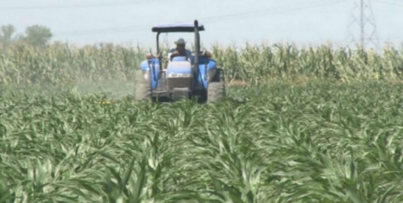 Hay disposición de la Secretaria de Agricultura para gestión de recursos