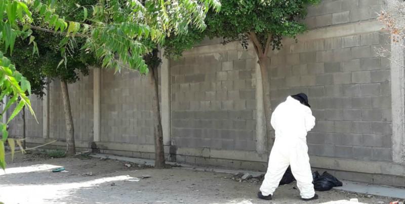 Mantiene en alerta a las autoridades hallazgo de persona desmembrada en Culiacán