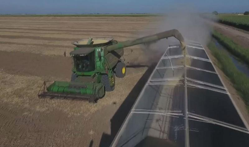 Productores agrícolas de Sinaloa preparan proyecto de presupuesto