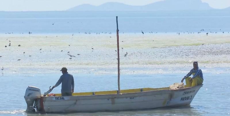 Atenderán problemas de adicciones en campos pesqueros