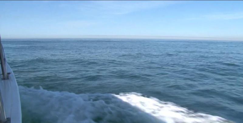 Convertir al Mar de Cortés en área protegida perjudicaría producción pesquera: Humberto Becerra