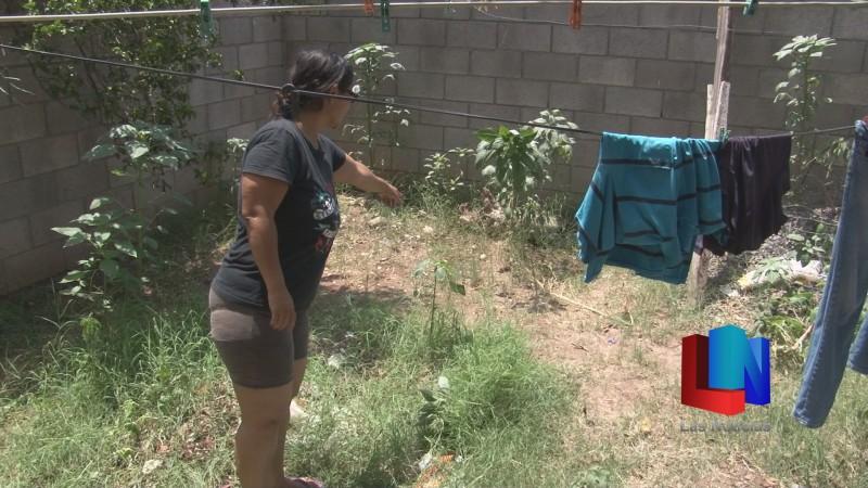 En Cajeme, arrojan bebé en patio de un domicilio
