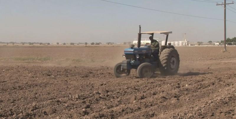 Atiende la Procuraduría Agraria en Sinaloa, varios asuntos por conflicto de tierras