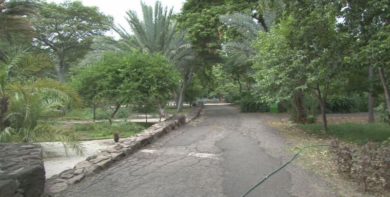 El Jardín Botánico de Culiacán reúne distintos ecosistemas en un solo lugar