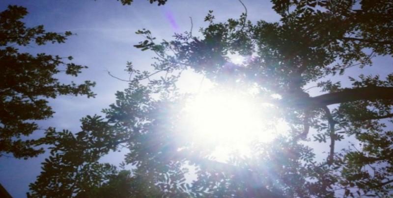 Exhortan a la población de cuidarse de padecimientos por altas temperaturas