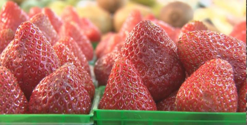 Fresas con crema un postre que mitiga el calor en Culiacán