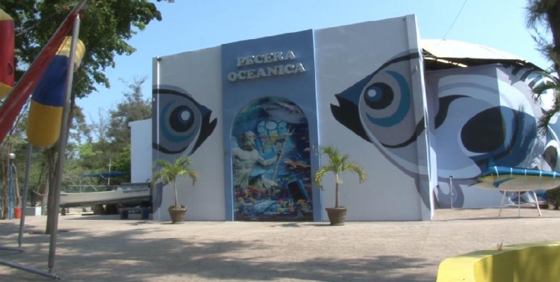 Reapertura atractivo Acuario Mazatlán