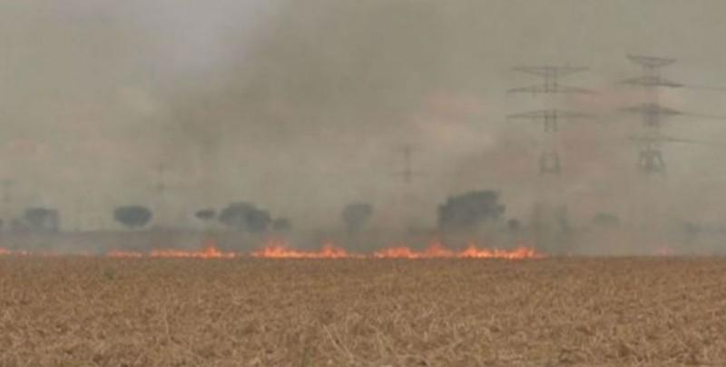 Ayuntamientos, encargados de vigilar y sancionar la quema de soca