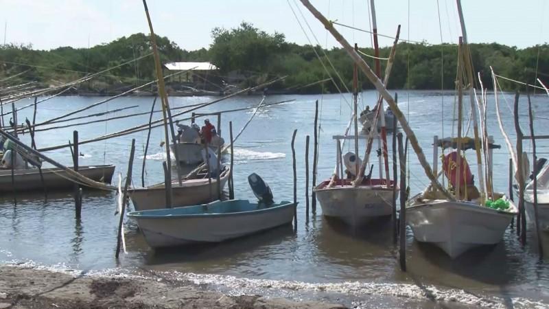 Se cuenta un saldo favorable en materia ambiental para Sinaloa