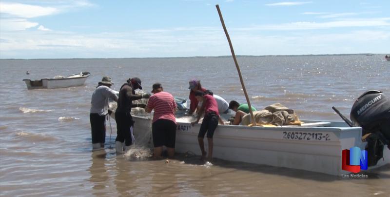 En Huatabampo, expiden permisos para la pesca de camarón
