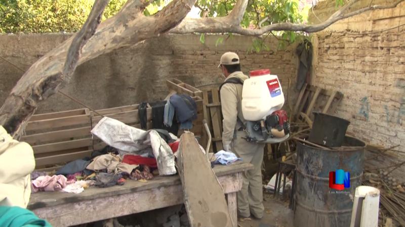 Cajeme sigue sin registrar casos de dengue