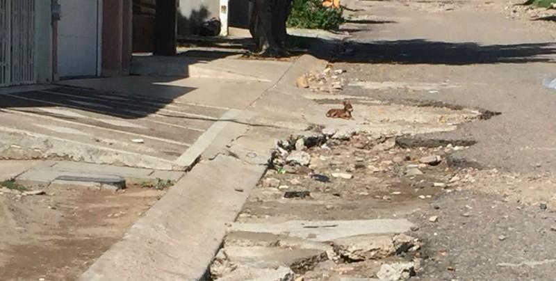 Calle Severiano Moreno se encuentra totalmente destruida