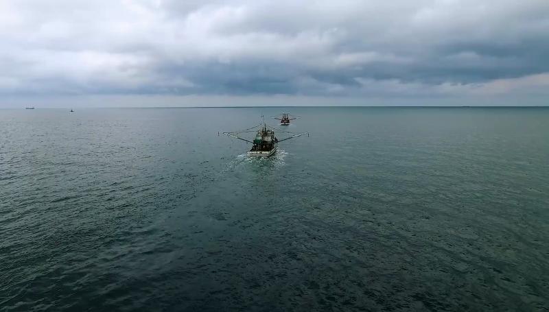 Recurrirán al amparo pescadores de Sonora