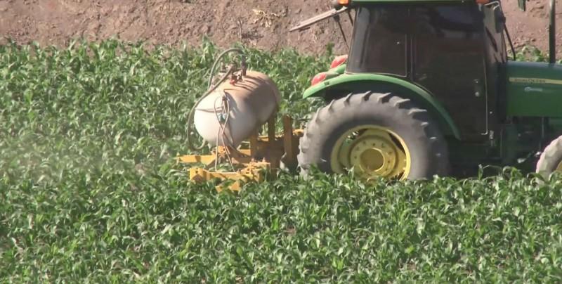 Altos costos en los insumos agrícolas dejan sin utilidad a productores