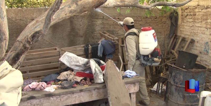 En Cajeme, Jefe de jurisdicción 4 señala que se contabilizan 41 semanas sin dengue