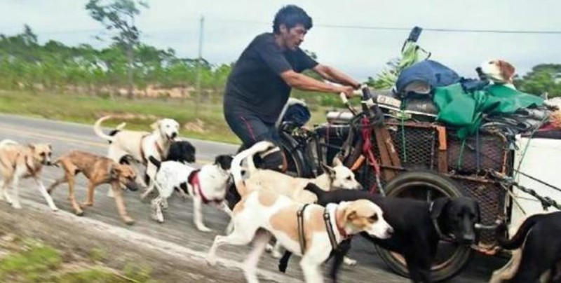 Edgardo, el hombre que atraviesa México rescatando perros abandonados
