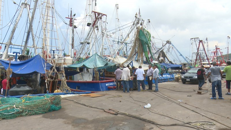 Pescadores invierten en embarcaciones alrededor de un millón de pesos